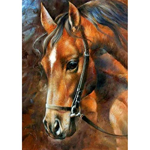 MXJSUA DIY 5D Diamond Painting by Number Kits Full Round Drill Rhinestone Picture Art Craft for Home Wall Decor Brown Horse 30x40 cm