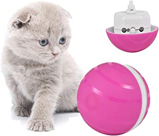 Wicked Ball -Interactive Cat Ball Automatic Cat Toy with Built-in Red LED Light, USB Rechargeable 2nd Generation Waterproo...