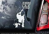 Sticker International Border Collie - Pegatina de Coche - Perro Signo Ventana, Parachoques Forma Regalo - V001 - Blanco/Claro - Externo Exterior Estampado, 200x100mm