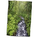 3dRose Bridal Veil Creek, Columbia River Gorge, Mt. Hood National Forest, OR - Towels (twl_332036_1)