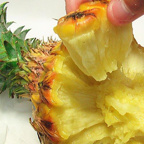 スナックパイン 沖縄県産 ボゴール お試し 2玉 (約800g-1.4kg前後) ちぎって食べるパイナップル