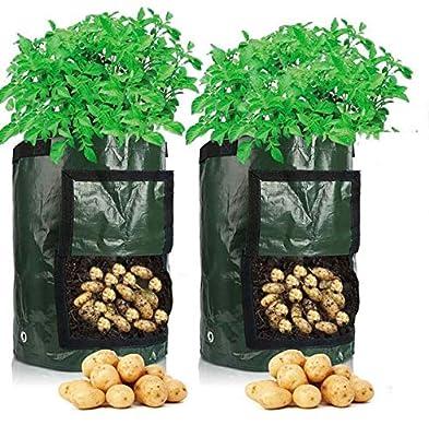 Sac de Culture de Pommes de Terre Croissance, 2 pcs 10 Gallons Sac de Legumes, 35 x 45 cm en Tissu Durable avec Rabat et poignée