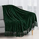 PAVILIA Chenille Tassel Fringe Throw Blanket | Velvety Texture Decorative Throw for Sofa Couch Bed | Soft Silky Cozy Lightweight Knitted Throw | Green 50 x 60 Inches