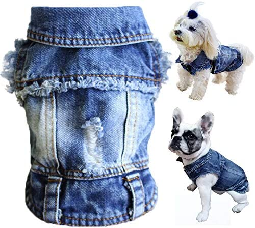Cute puppy clothes