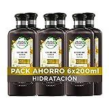 Leche De Coco Hidratación Champú, En Colaboración Con El Real Jardín Botánico De Kew 1500 ml