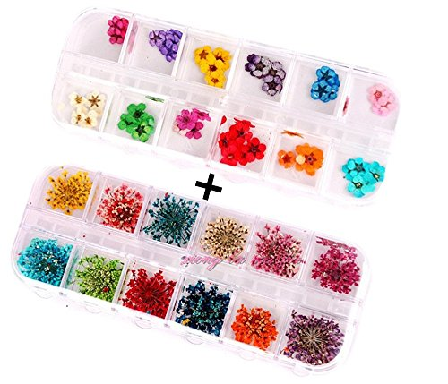 XICHEN 36 Starry Plus 36 Five Flower Flower Three-Dimensional Applique 3D Nail Stickers Nail Supplies Dried Flowers 2 12 Color (Starry and Five Flower)