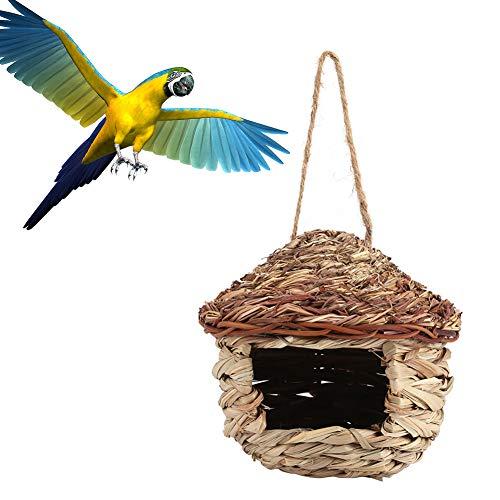 FTVOGUE Casette per Uccellini da Esterno, Casa degli Uccelli di Paglia Nido Intrecciato a Nido d'Ape Allevamento di Animali Gabbia per Pappagallo Criceto Piccoli (M)