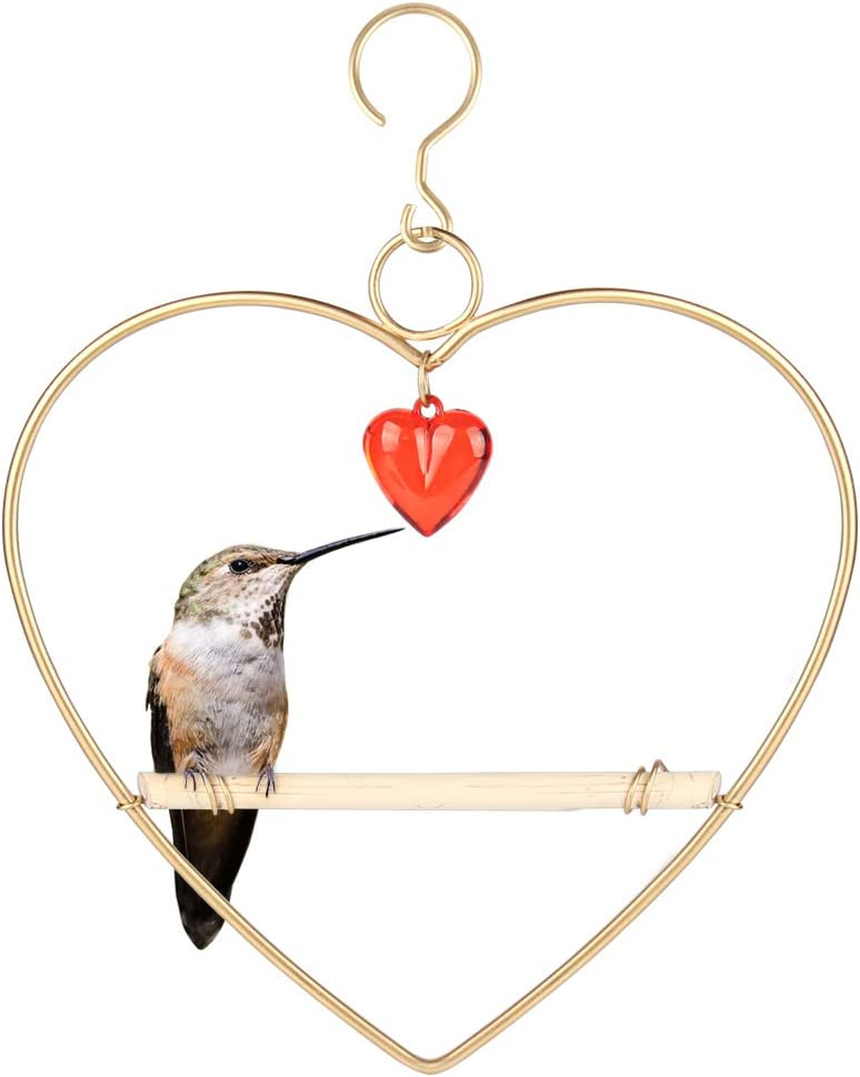 Tfro Cile Over item handling Bird Elegant Cage Accessories Wooden Toys Parrot Metal Hummi