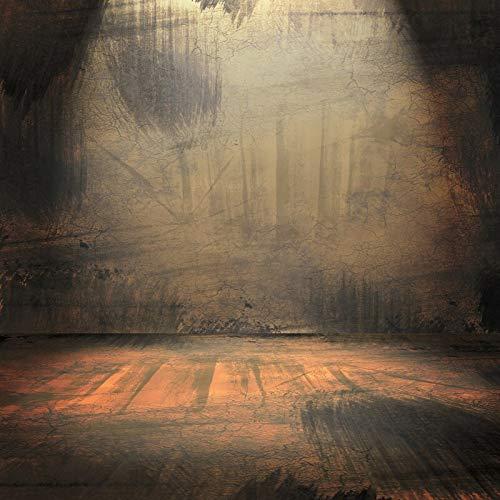 Fondo de Pared Oscura para fotografía Suelo de Madera de ladrillo Foco Brillante Escenario Fiesta muñeca bebé Photozone Foto telón de Fondo A16 2,7x1,8 m
