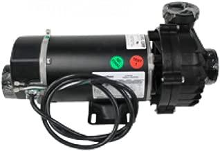 Hot Spring Spas Jet Pump - 1 Hp & 2 Spd 71894