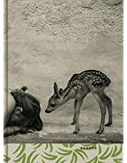 Summer of fawn: Summer of the Fawn