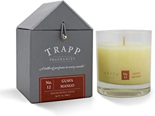 Trapp Signature Home Collection No. 12 Guava/Mango Poured Scented Candle, 7-Ounce