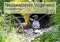Neuseelands Vogelwelt (Wandkalender 2022 DIN A3 quer): Eine Reise in die gefiederte Tierwelt am anderen Ende der Erde. (Monatskalender, 14 Seiten )
