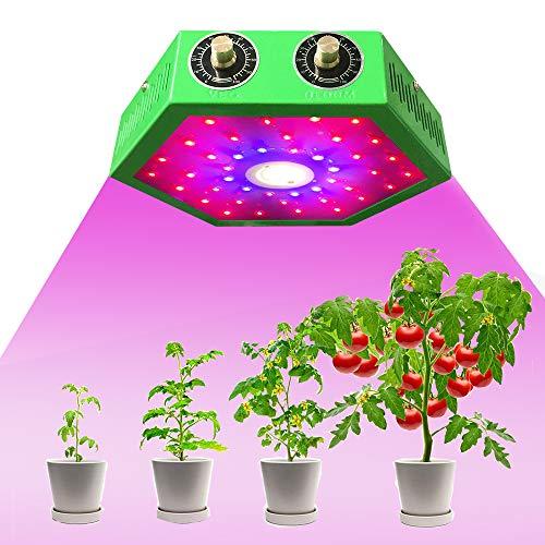 Lámpara LED para plantas, espectro completo, con dos interruptores para plantas, con termómetro, medidor de humedad y potente sistema de refrigeración para verduras y flores en interiores (1000 W)