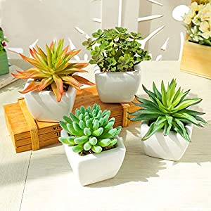 LTJX Mini Artificial Potted Plants Mini Fake Succulent Plants Set of 4 Artificial Plastic Succulents Potted, Perfect Decoration Gift for House Office Desk Kitchen