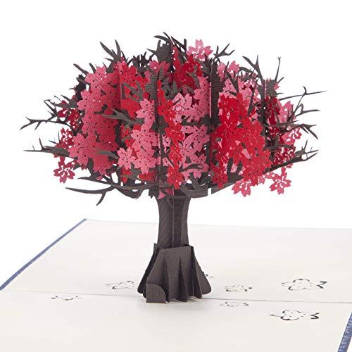 Cardology | Ruby Huwelijksverjaardag Pop Up Card | Ruby Huwelijksverjaardag geschenken, 40e Huwelijksverjaardag Kaarten | Handgemaakte Kaarten Nederland