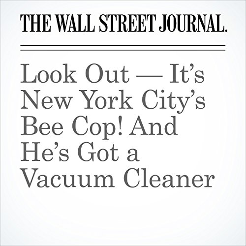 Look Out — It's New York City's Bee Cop! And He's Got a Vacuum Cleaner | Zolan Kanno-Youngs