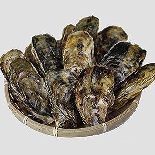 【冷凍・カンカン焼き】殻付きカンカン牡蠣/桃こまち20個(ナイフ・軍手付)[牡蠣]