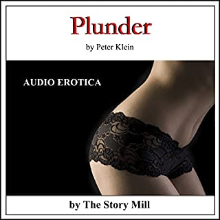 Plunder audiobook cover art