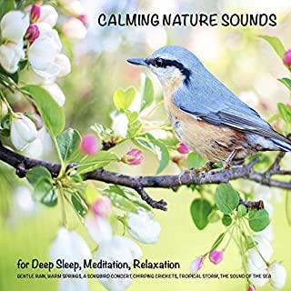 Calming Nature Sounds (without music) for Deep Sleep, Meditation, Relaxation audiobook cover art