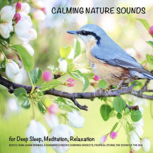 Calming Nature Sounds (without music) for Deep Sleep, Meditation, Relaxation cover art