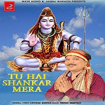 Tu Hai Shankar Mera