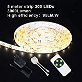 YOLUXZM Tira de luz LED blanca cálida 300 leds impermeable regulable cinta de luz LED 5 m 10 m 15 m 20 m 30 m luces flexibles, Sin batería, 10M(2 SET)