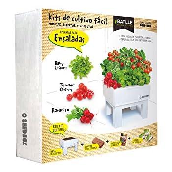 Huerto Urbano - Seed Box Ensaladas - Batlle: Amazon.es: Jardín