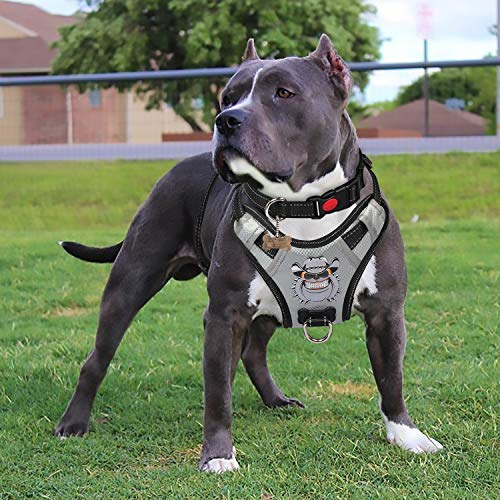 Babyltrl Silver Big Dog Harness No-Pull Anti-Tear Adjustable Pet Harness Reflective Oxford Material Soft Vest for Medium Large Dogs Easy Control Harness (XL, Silver)