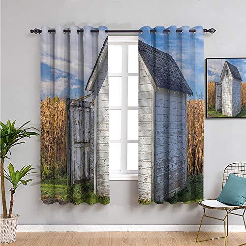 VICWOWONE outhouse Cortina de cocina, cortinas de 99 cm de largo con trigo y hierba bajo el cielo imagen Trae belleza W54 x L39 pulgadas calndula verde azul y blanco