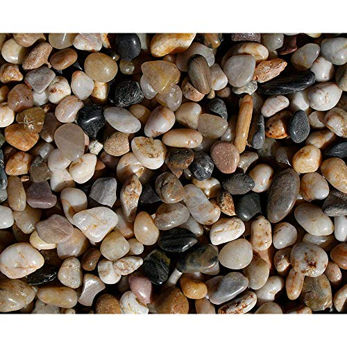 Exotic Pebbles Polished Gravel, Mixed, 3/8-Inch (5 Pounds)