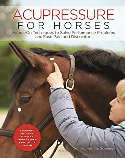 equine acupressure points chart