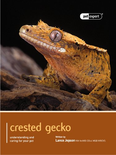 Crested Gecko (Pet Expert Book 1) (English Edition)