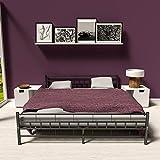 Zoom IMG-1 tectake letto metallo con rete