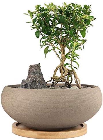 MUZHI Round Unglazed Ceramic Bonsai Pot with Bamboo Tray Large Rough Pottery Succulent Planter product image