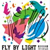 Fly by Light