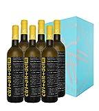 Ctrl+Alt+Del - Vino blanco semi-dulce - Tierra de Castilla - 6 botellas