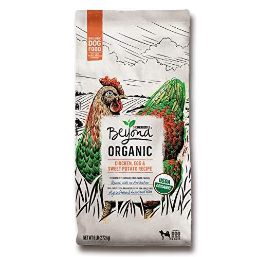 Purina Beyond High Protein Adult Dry Dog Food, Organic Chicken, Egg & Sweet Potato Recipe - 6 lb. Bag