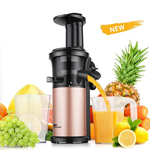 Amzdeal Entsafter - Slow Juicer 43 ± 5 U/min Edelstahl, Gemüse und Obst mit Hoher Saftausbeute, Ruhiger Motor Hoher Nährstoff für Saft, Mamelade, Icecreme usw.