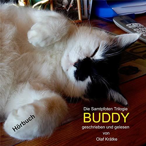 Buddy cover art