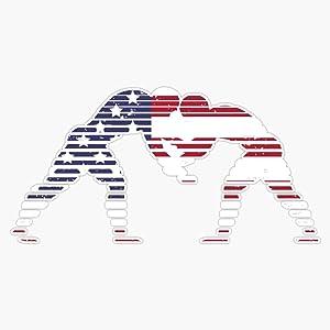 Usa Flag Wrestling Vinyl Decal Wall Laptop Bumper Sticker 5