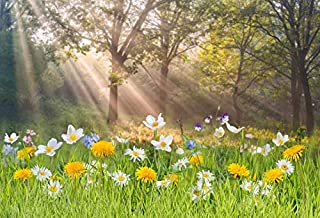 Laeacco 7x5ft Vinyl Photography Backdrop Spring Landscape Flowers and Green Grass Trees Sun Rays Scene Floral Spring Outdoors Photo Background Children Baby Adults Portraits Backdrop