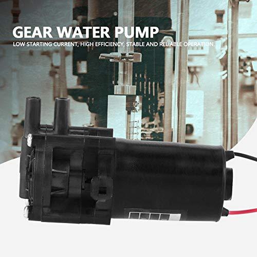 Zahnradwasserpumpe, Wasserpumpe, Mini-Korrosionsbeständige Pumpe, hoher Wirkungsgrad für Wasserspender für Kaffeemaschinen