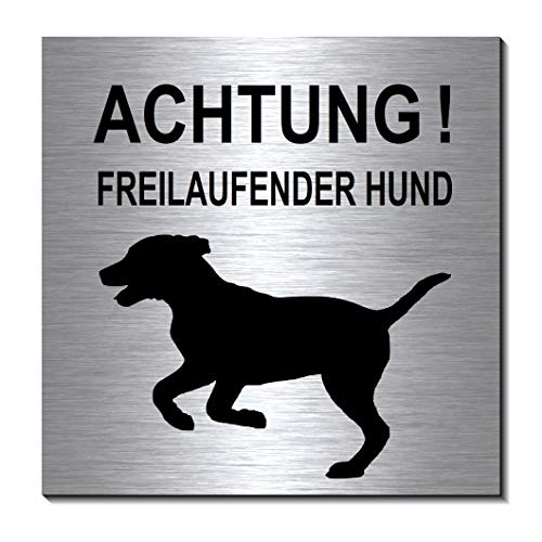 Achtung-Freilaufender-Hund-Schild 100 x 100 x 3 mm-Aluminium Edelstahloptik silber mattgebürstet Hinweisschild-1910-65