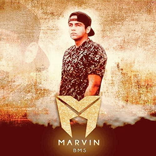 Marvin Bms