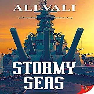 Stormy Seas audiobook cover art