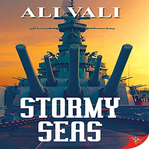 Stormy Seas cover art
