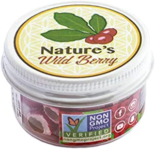 The Travel Jar | 30 Servings | $1~15-20 mins | BEST WAY TO TAKE YOUR BERRIES ON THE GO | 100% Premium Ledidi Fruit | Turn Sour Sweet With Flavor Changing Berries AKA