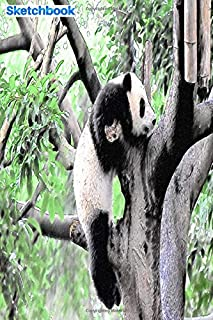 """Sketchbook: panda climbing a tree in the forest: 6"""" x 9"""", 103 pages, For everyone: man, woman, children, teenagers and ent..."""