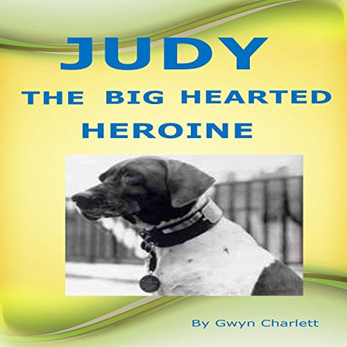Judy the Big Hearted Heroine audiobook cover art